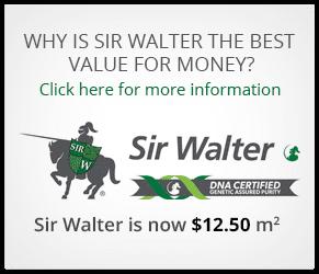 Sir Walter - Order Online