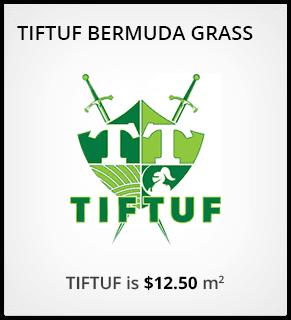TifTuf Order Online
