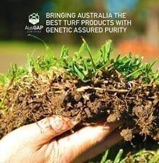 AusGAP and Sir Walter DNA Certified