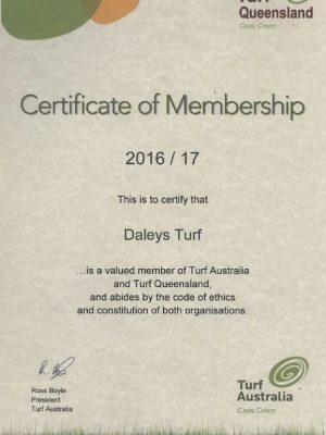 Turf Queensland Australia Certificate
