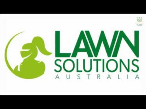 nutgrass, lawn care, weeds in lawn, top dressing,