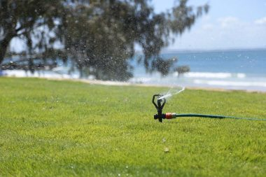 Daleys Turf - Noosa Beach Project