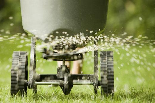 Fertilising your lawns in winter