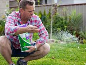 Top Tips For Fertilising Your Lawn